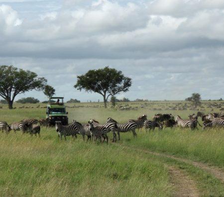 Abenteuer Tansania