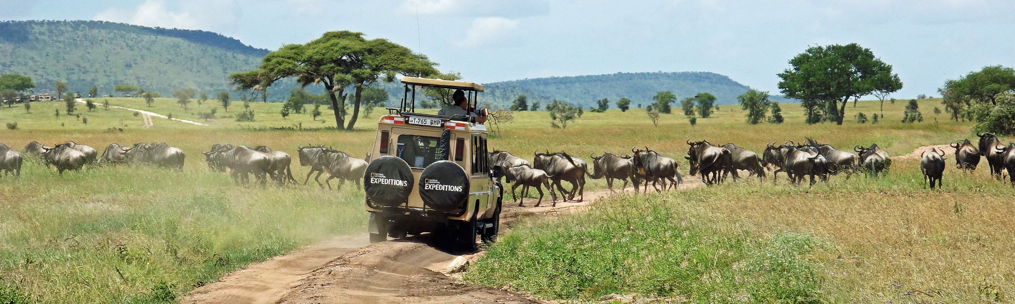 auf Safari in Tansania
